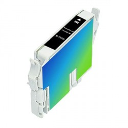 Cartucho  De Tinta Compatible EPSON T0341 negro C13T03414010